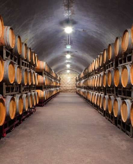 Wine cellar in Northern Portugal