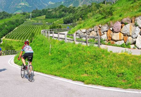 Biking a winding road in scenic Sud Tyrol