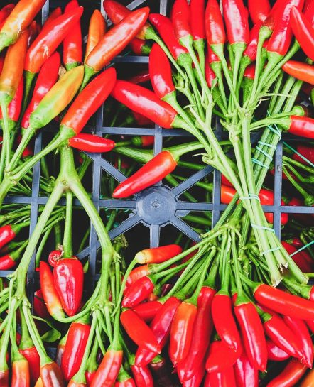 Red peppers of Sud Tyrol